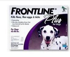 Frontline Plus Large Dogs 20 - 40kg