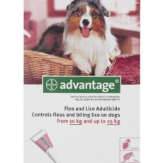 Advantage-10-25