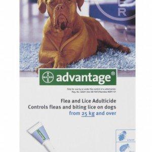 Advantage Extra Large Dog over 25kg
