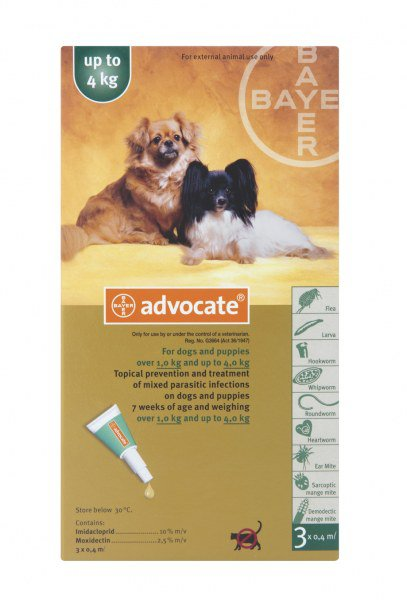 Advocate Small Dog Under 4kg Door To Paw