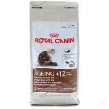 feline aging +12
