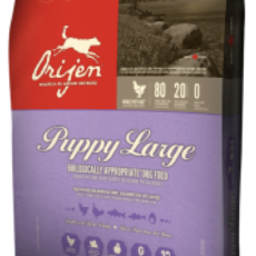 Orijen Large Breed Puppy - 13kg