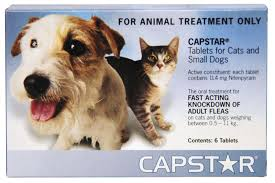 Capstar For Cats and Small dogs under 11kg