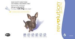 Revolution Small Dog 2.5 - 5 kg