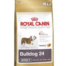 Royal Canin Medium - English Bulldog Adult