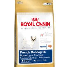 BHN French Bulldog Adult
