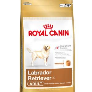 royal canin maxi labrador retriever 12kg door to paw. Black Bedroom Furniture Sets. Home Design Ideas