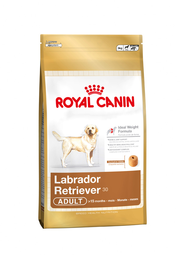 royal canin maxi labrador retriever 12kg door to paw. Black Bedroom Furniture Sets. Home Design Ideas
