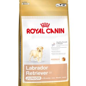 Royal Canin Maxi - Labrador Retriever Junior