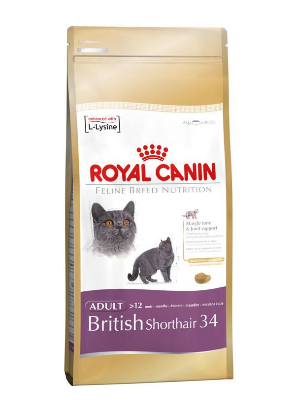 Royal Canin Feline British Shorthair 34 Door To Paw