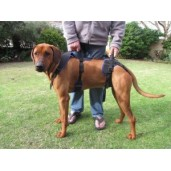Holisticpet Full Body Harness